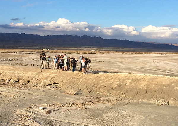 Birdfinders' group at the Salton Sea