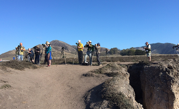 Birdfinders' group at San Simeon