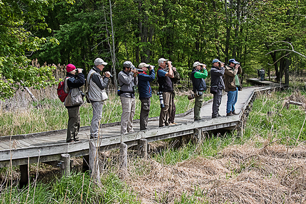 Birdfinders' group at Maumee